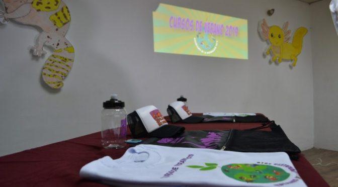 Promociones - Conexión Michoacán