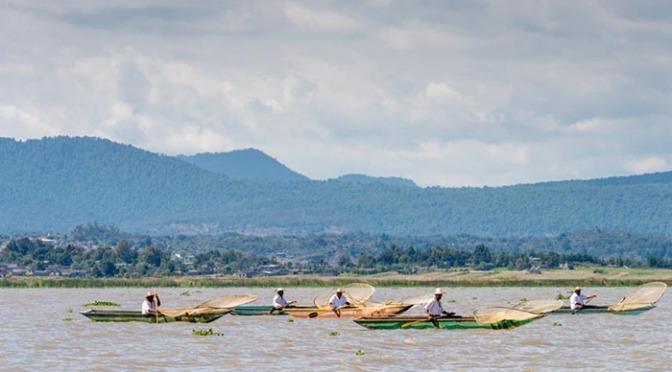 Miles de millones de pesos no han servido. Lago de Pátzcuaro se deteriora: mueren especies y el sustento de familias